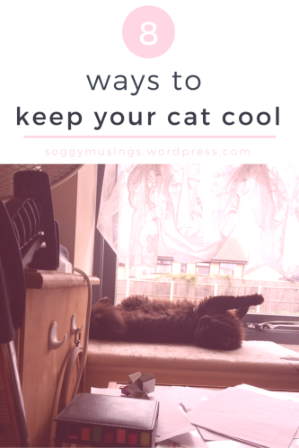 8 ways to keep your cat cool