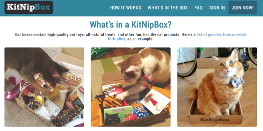 Kitnip Box