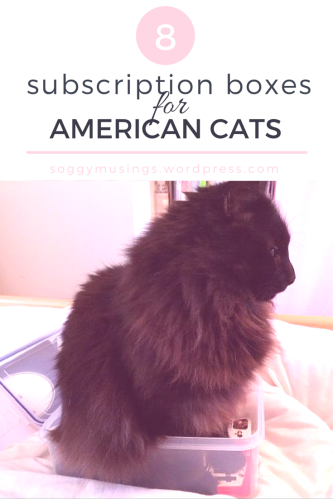 8 US Cat Boxes