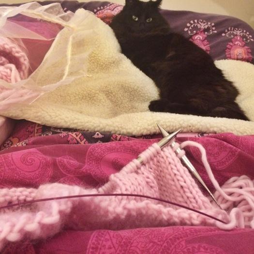 Knitting supervisor