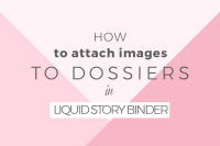 How to add images in Liquid Story Binder