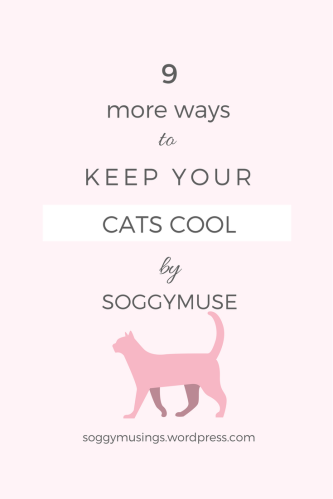 9 more ways to keep your cats cool in summer