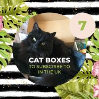 7 UK Cat Boxes